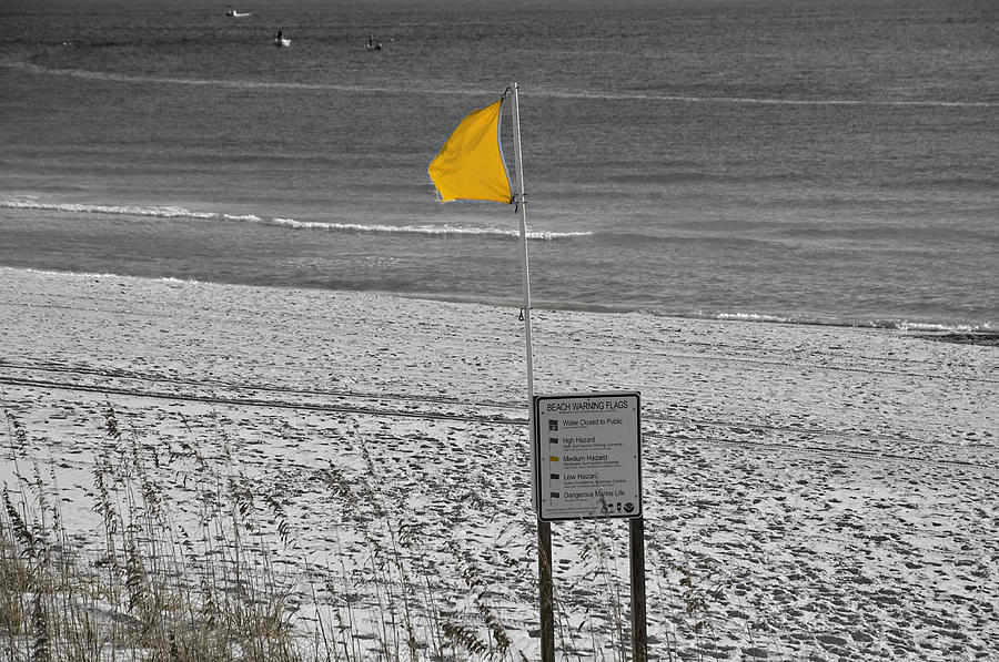 Coastline Photograph - Yellow Hazard by Susan Leggett