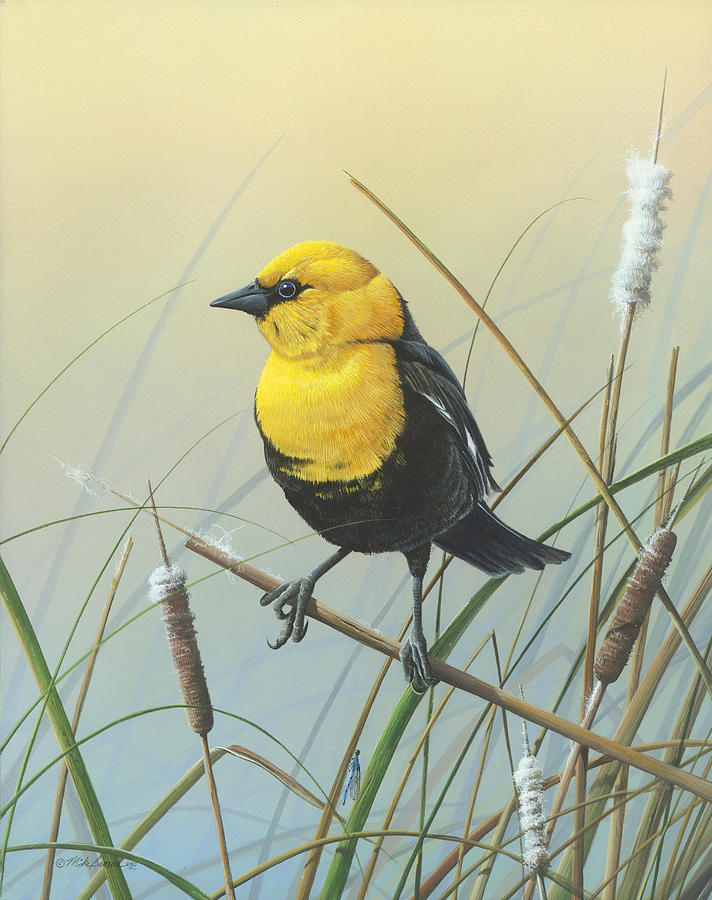 Yellow-headed Black Bird Painting - Yellow-headed Black Bird by Mike Brown