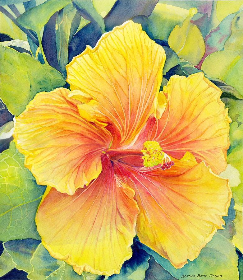 Yellow Flower Painting - Yellow Hibiscus by Brenda Beck Fisher