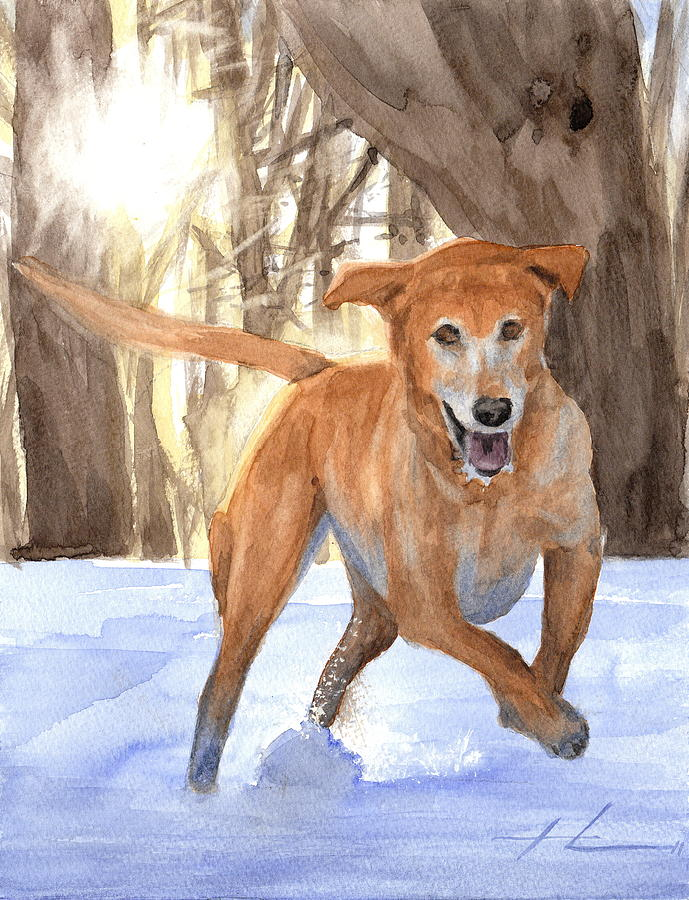 Yellow Lab Dog In Snow Watercolor Portrait Drawing by Mike Theuer