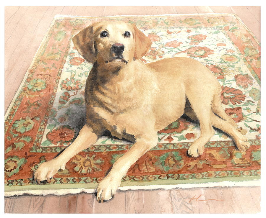 Yellow Lab On A Rug Watercolor Portrait Drawing by Mike Theuer