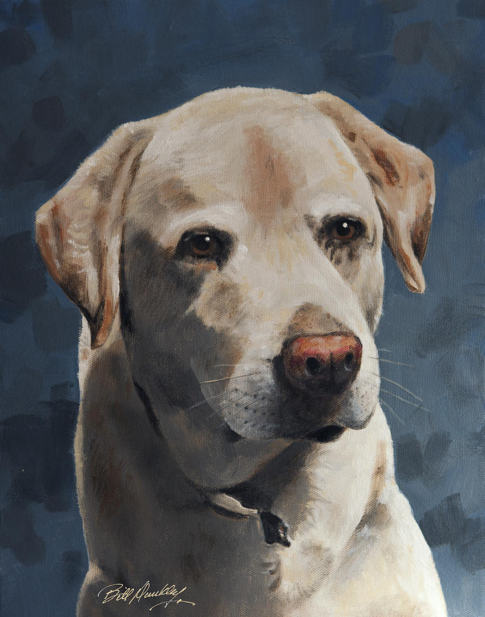 Dog Painting - Yellow Lab Portrait by Bill Dunkley