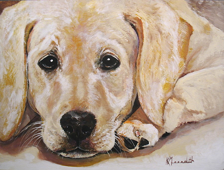 Yellow Lab Oil Paintings