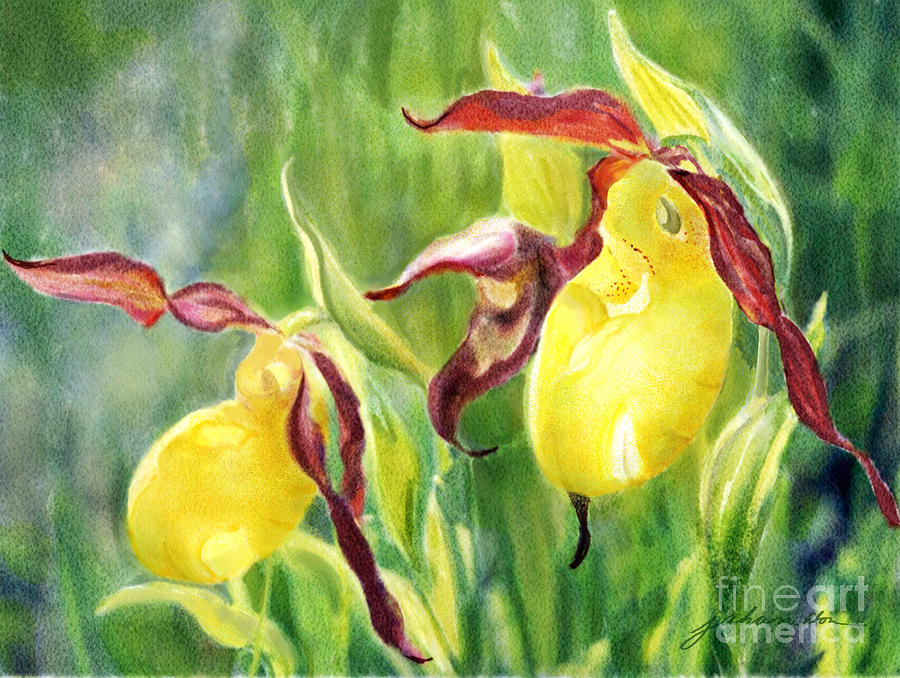 Flowers Painting - Yellow Lady Slippers by Joan A Hamilton