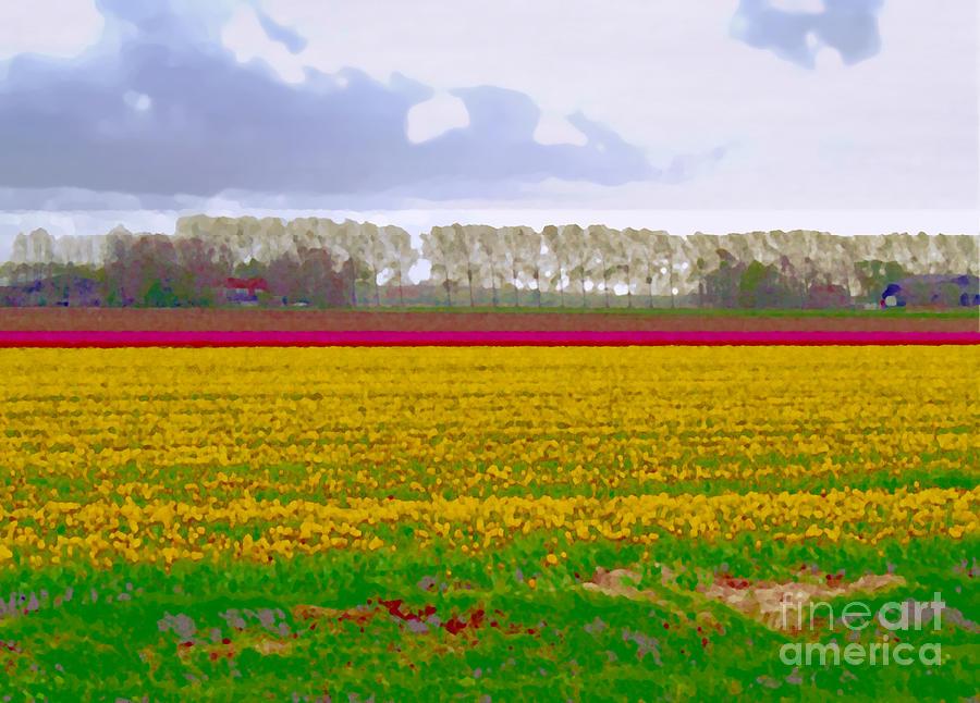 Yellow meadow by Luc Van de Steeg