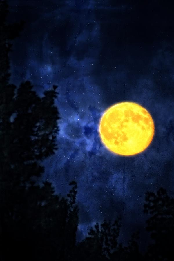 Full Moon Photograph - Yellow Moon by Dan Quam
