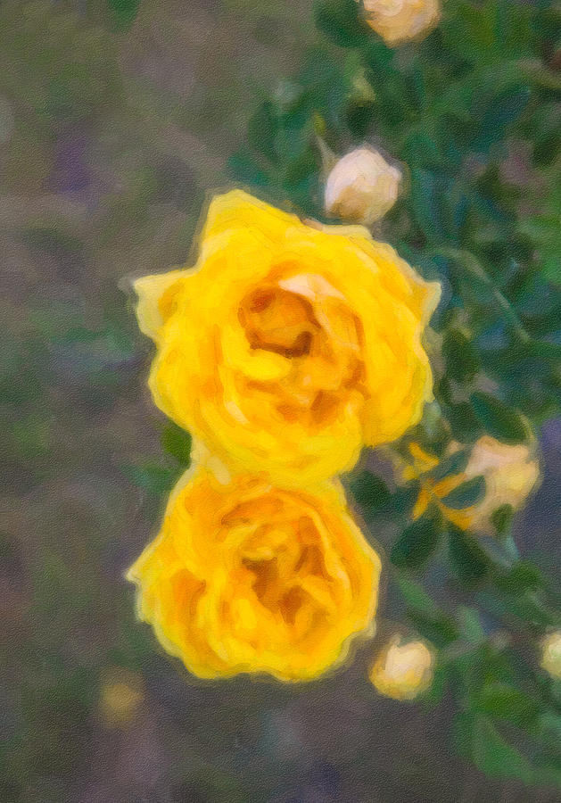 Impressionism Painting - Yellow Roses On A Bush by Omaste Witkowski