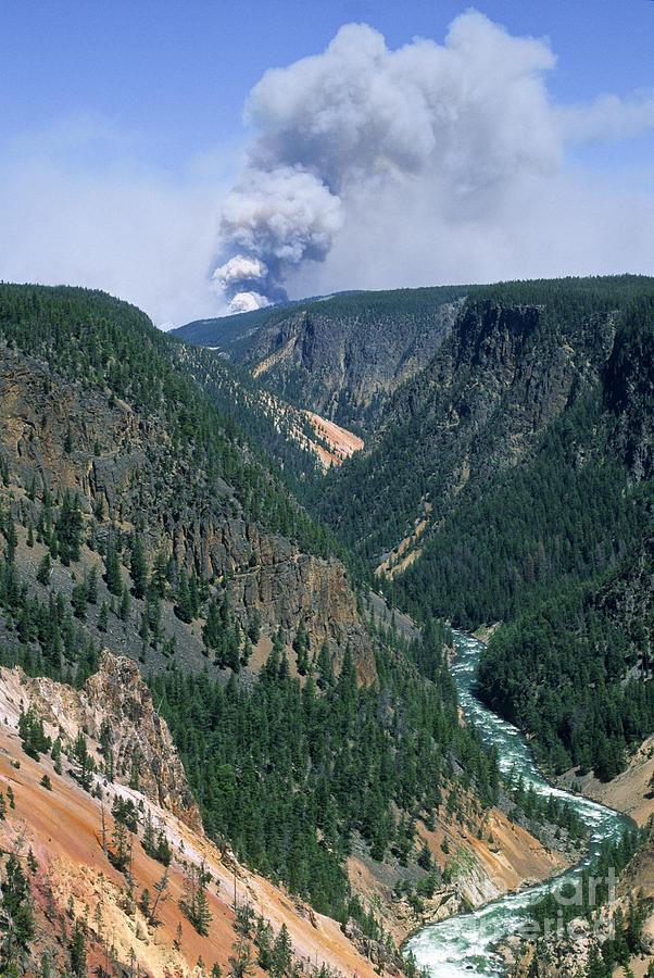 Fire Photograph - Yellowstone Afire by Sandra Bronstein