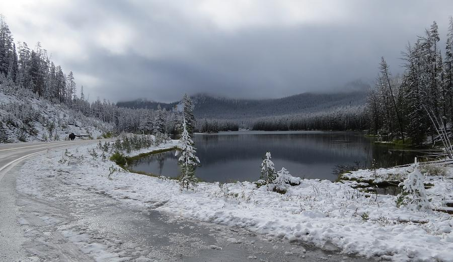 Yellowstone Photograph - Yellowstone Snow by Diane Mitchell