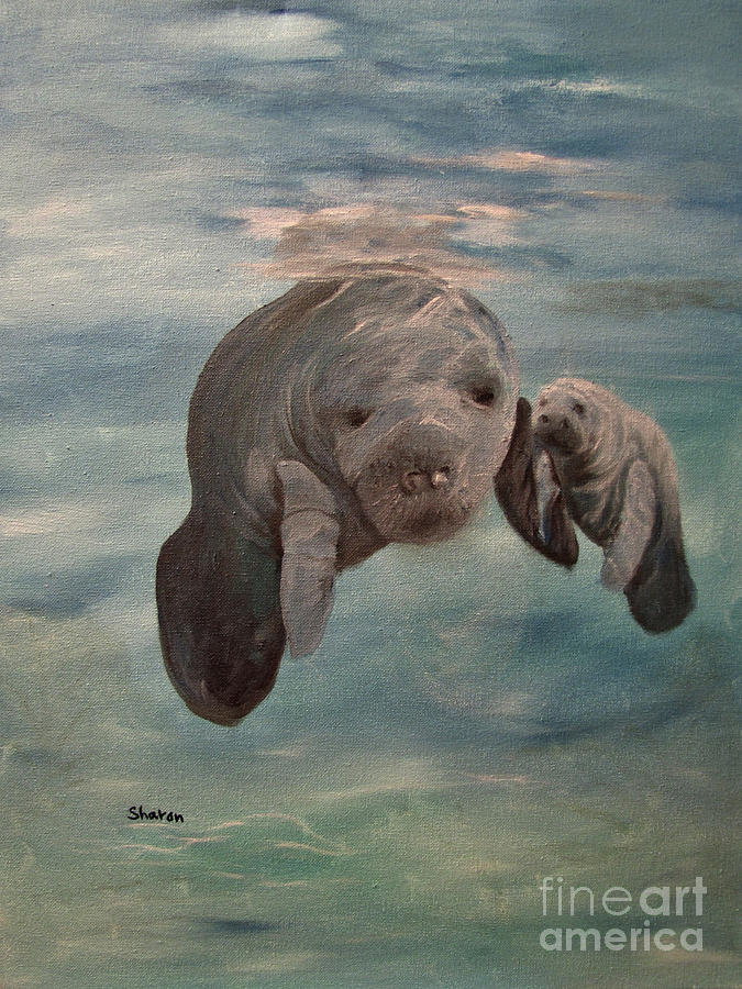 Manatee Painting - Yessir Thats My Baby by Sharon Burger