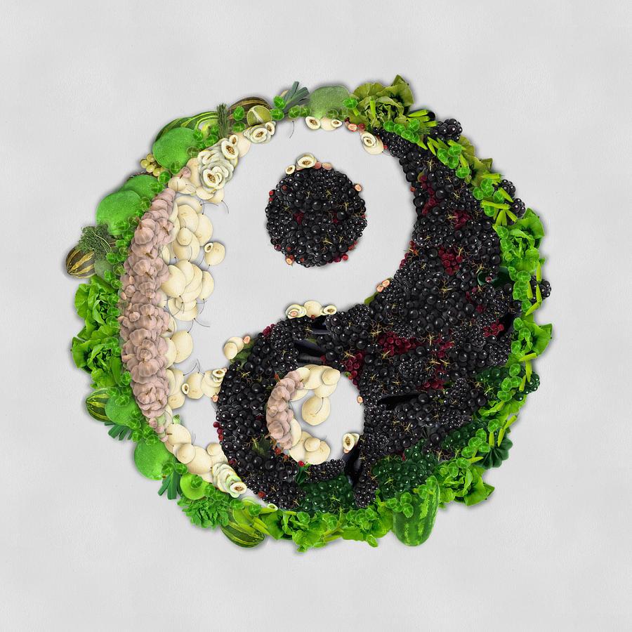 Yin Yang Vegetables Art On White Background Painting By Eti Reid