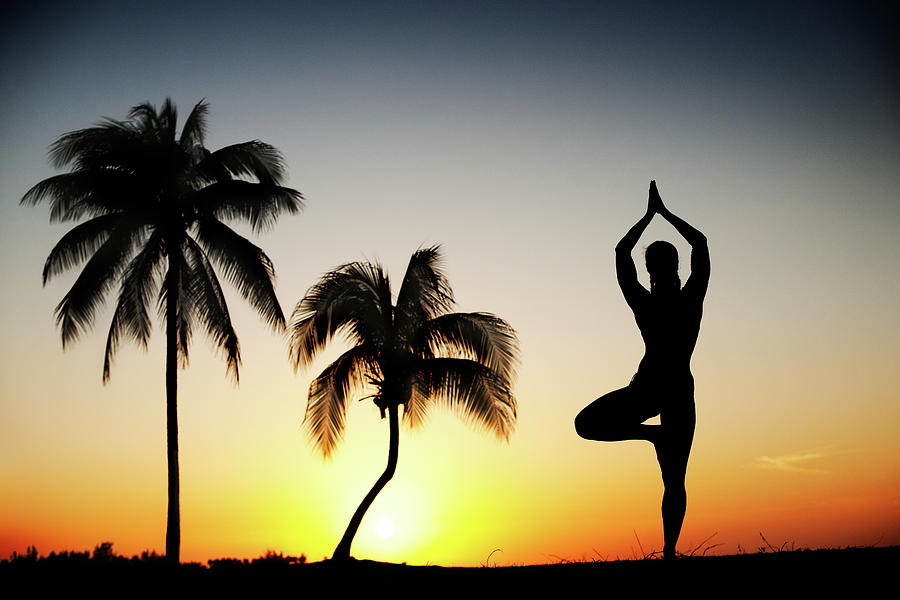 Yoga Tree Pose Photograph by Extreme-photographer