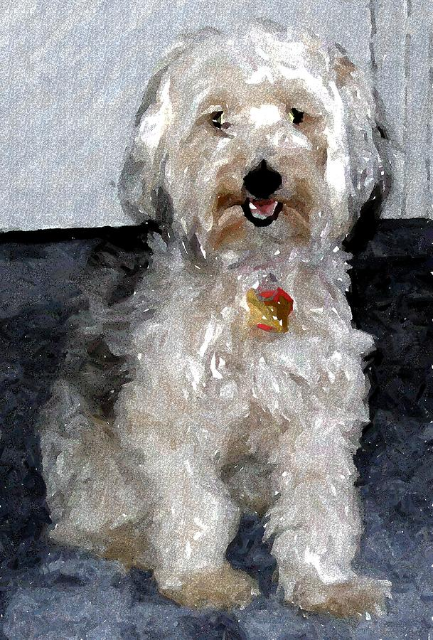 Yorkipoo Dog Pastel - Yorkipoo Dog by Olde Time  Mercantile