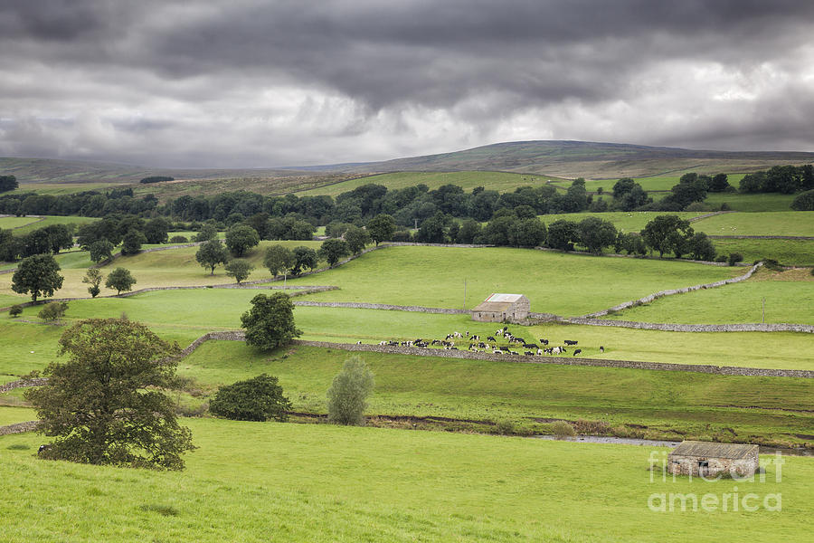 England Photograph - Yorkshire Dales by Colin and Linda McKie