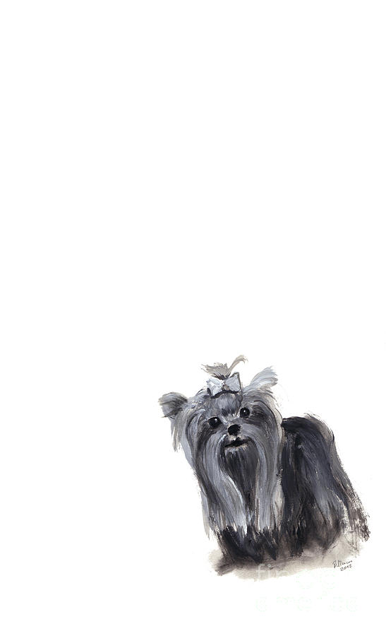 Yorkshire Terrier Painting - Yorkshire Terrier by Barbara Marcus