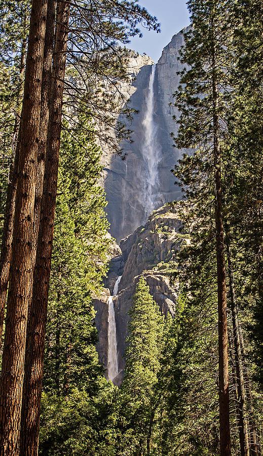 Water Photograph - Yosemite Falls - California USA by Tony Crehan