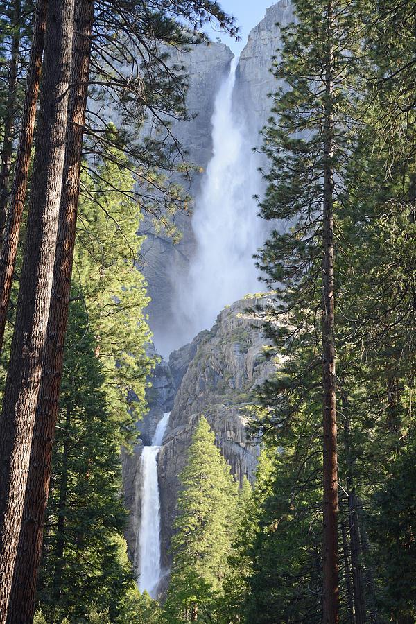 Yosemite Photograph - Yosemite Falls In Morning Splendor by Bruce Gourley