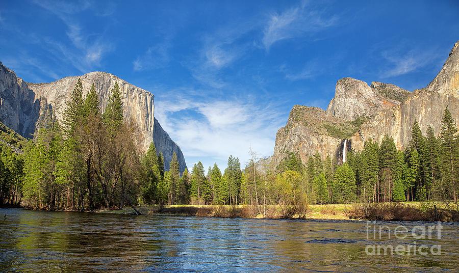 Park Photograph - Yosemite by Jane Rix