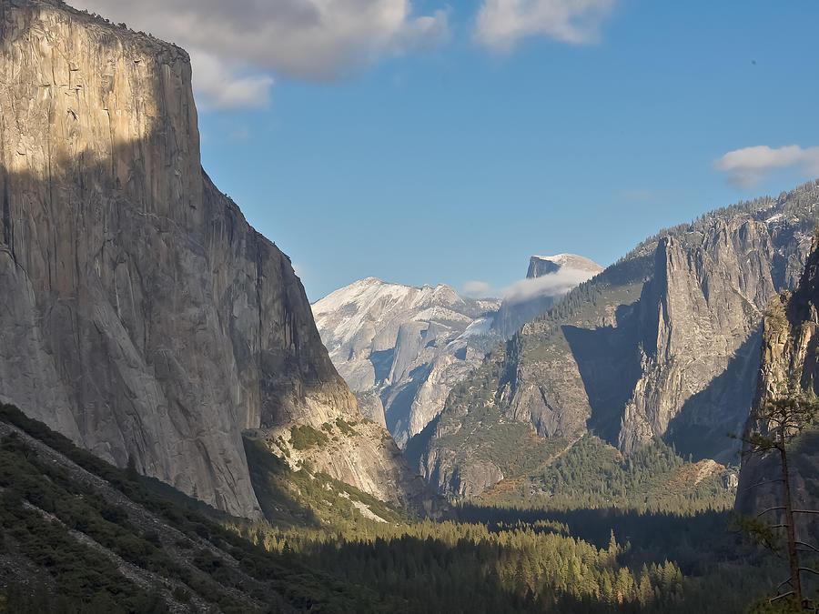 Yosemite Photograph - Yosemite National Park by Steven Lapkin