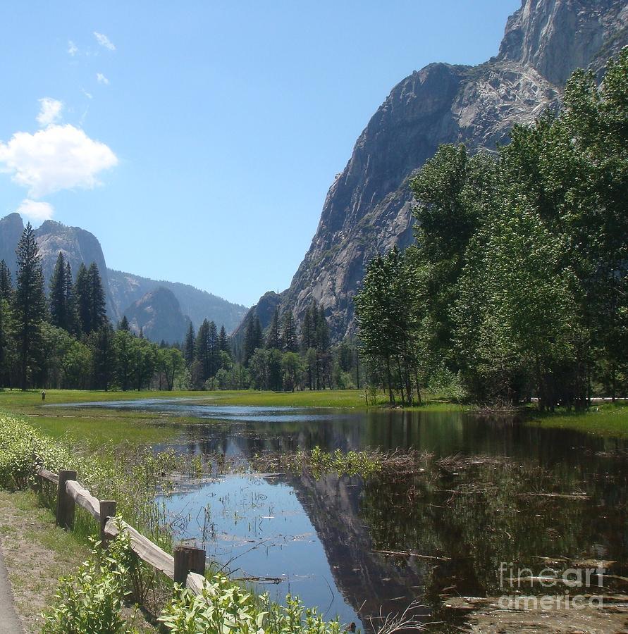 Yosemite Photograph - Yosemite Valley by Catherine DeHart