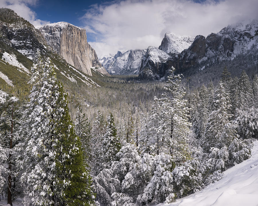 Beauty Photograph - Yosemite Valley In Winter by Richard Berry