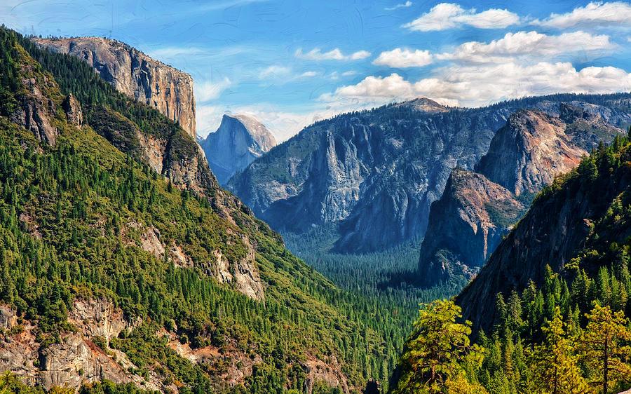 Yosemite Valley Overlook by John M Bailey