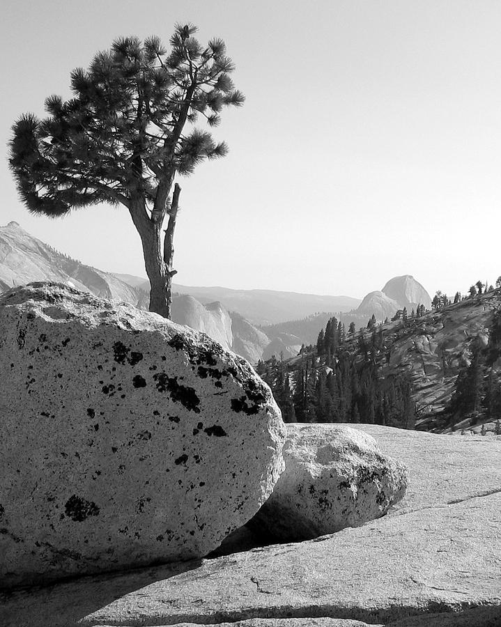 Yosemite's Olmsted Point by Kevin Desrosiers