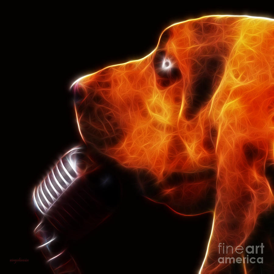 Animal Photograph - You Aint Nothing But A Hound Dog - Dark - Electric by Wingsdomain Art and Photography