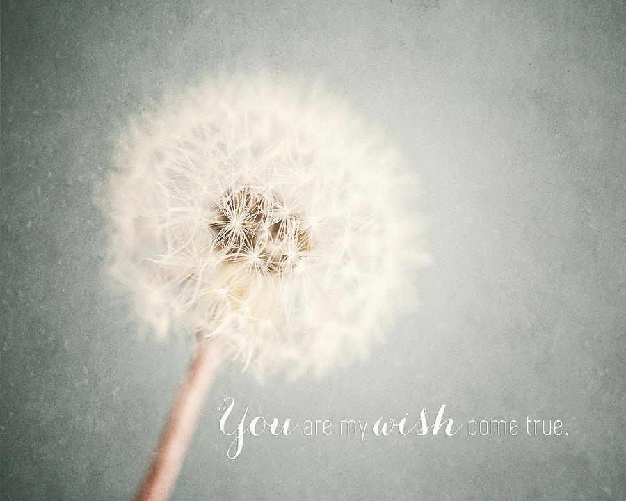 You Are My Wish Come True Typography Quote Photograph By