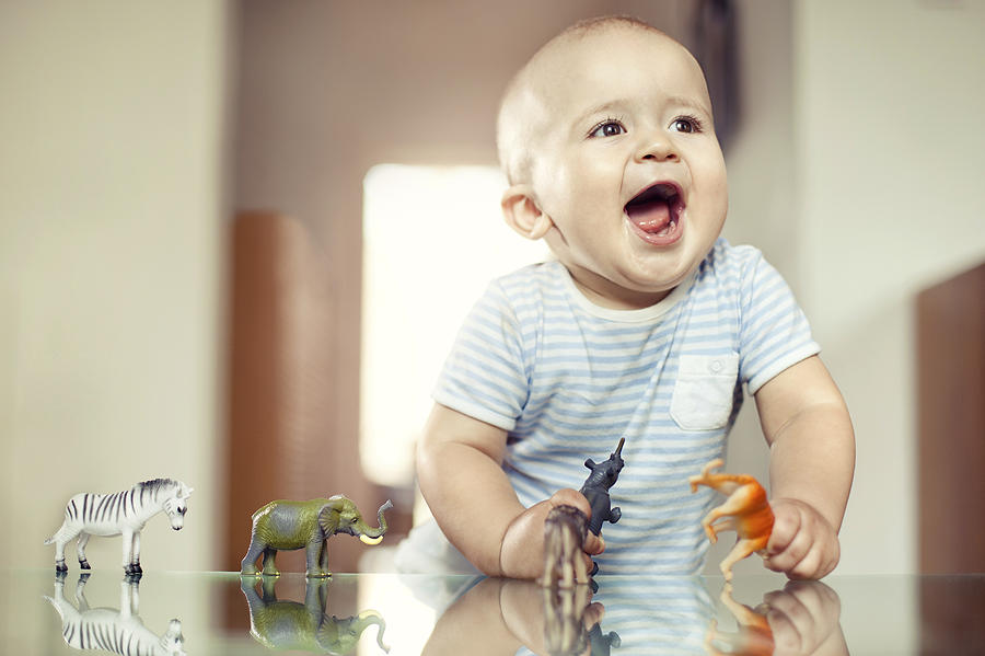Young Boy Playing With Toy Animals Photograph by Orbon Alija