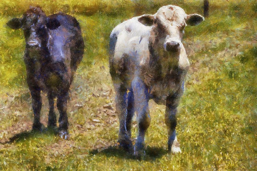 Bull Painting - Young Bulls by Barry Jones