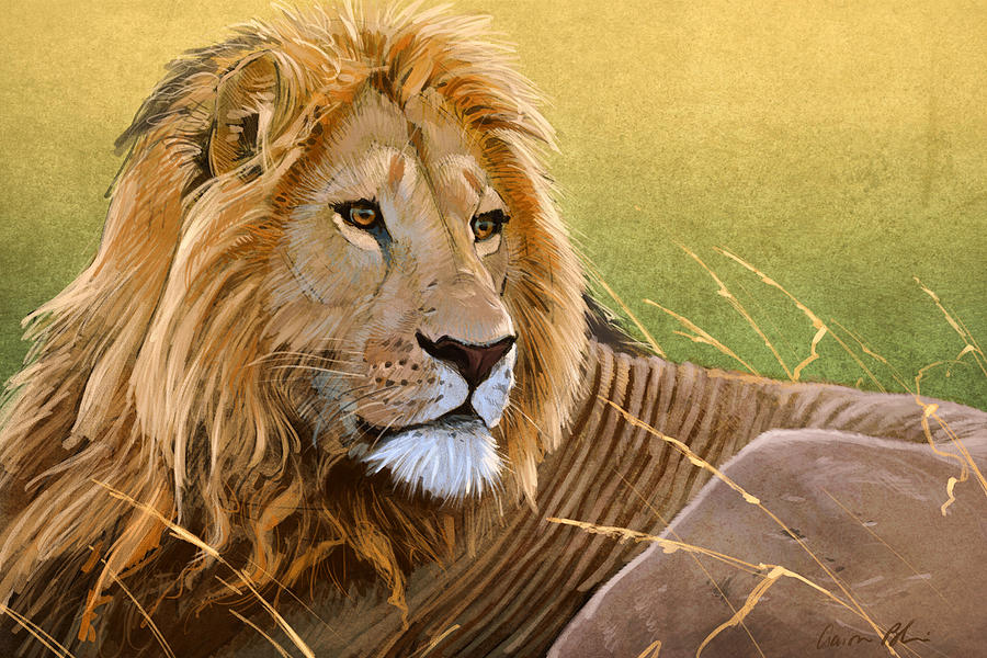 Lion Digital Art - Young Lion by Aaron Blaise