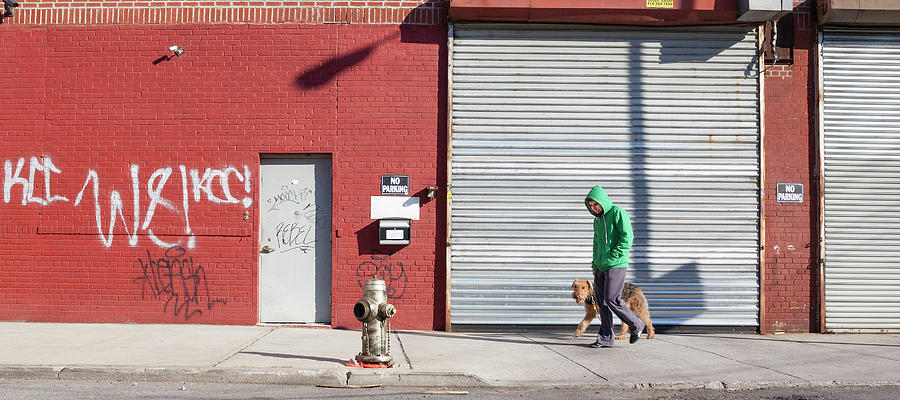 Young Man Walks Dog Photograph by Alex Potemkin