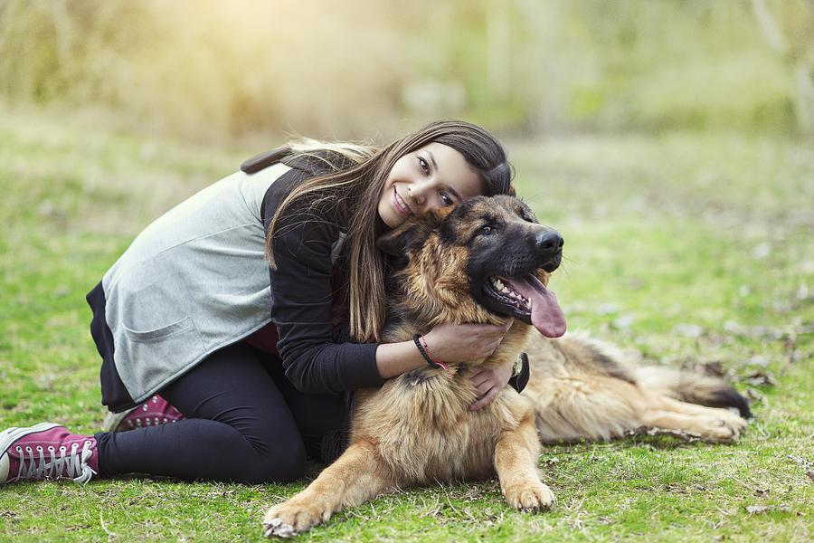Young Woman Hugging Her German Shepherd In The Park Photograph by AleksandarGeorgiev