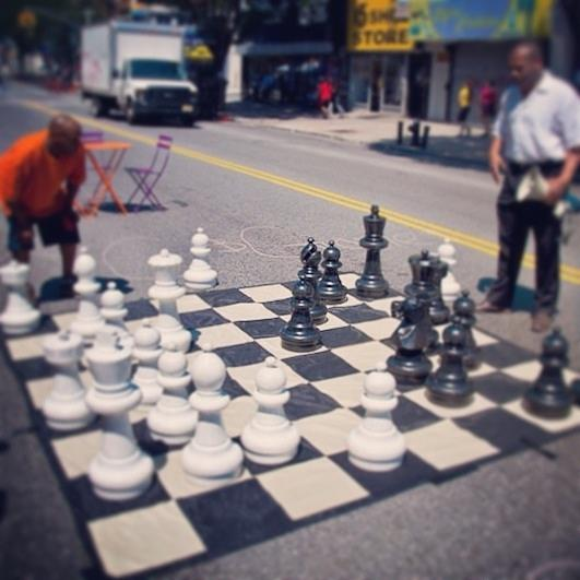 Your Move Photograph by Kas  Look