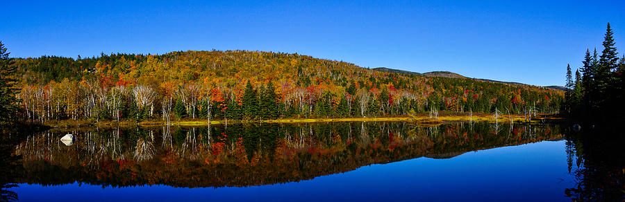 Nh Photograph - Zealand Pond Reflections by Rockybranch Dreams