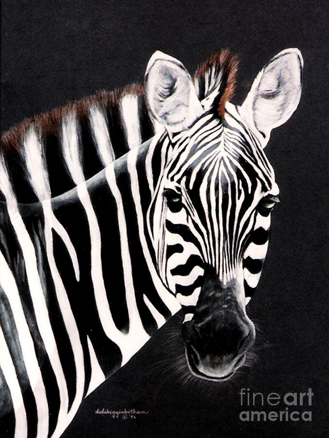 Stripes Painting - Zebra facing right by DiDi Higginbotham