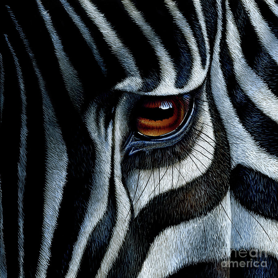 Zebra painting by jurek zamoyski for Easy acrylic animal paintings