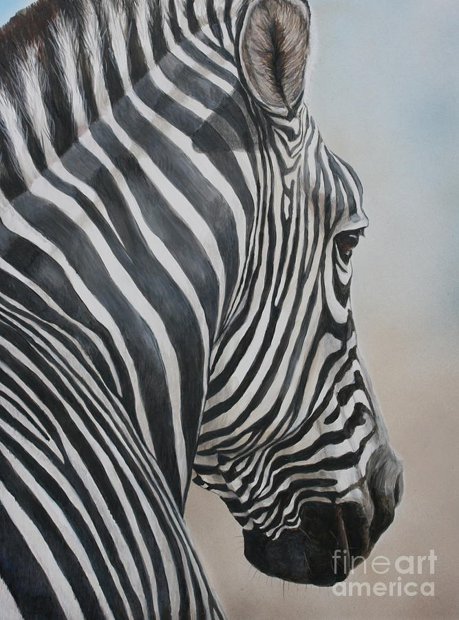 Zebra Painting - Zebra Look by Charlotte Yealey