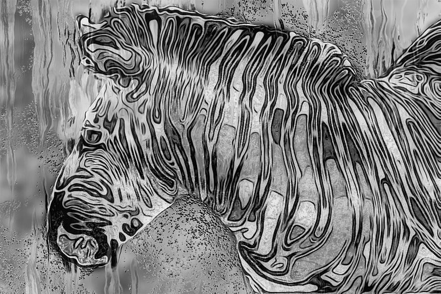 Zebras Painting - Zebra - Rainy Day Series by Jack Zulli