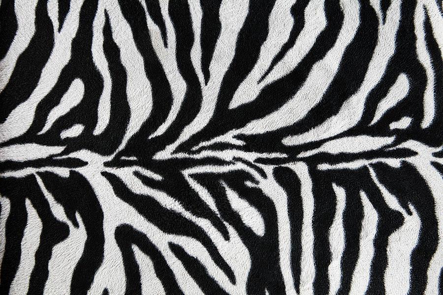 Zebra Textile Background Photograph by Narvikk