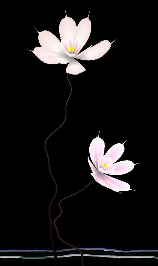 Lotus Digital Art - Zen Flower Twins With A Black Background by GuoJun Pan