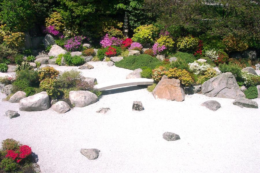 Zen Garden Photograph - Zen Garden by Pamela Schreckengost