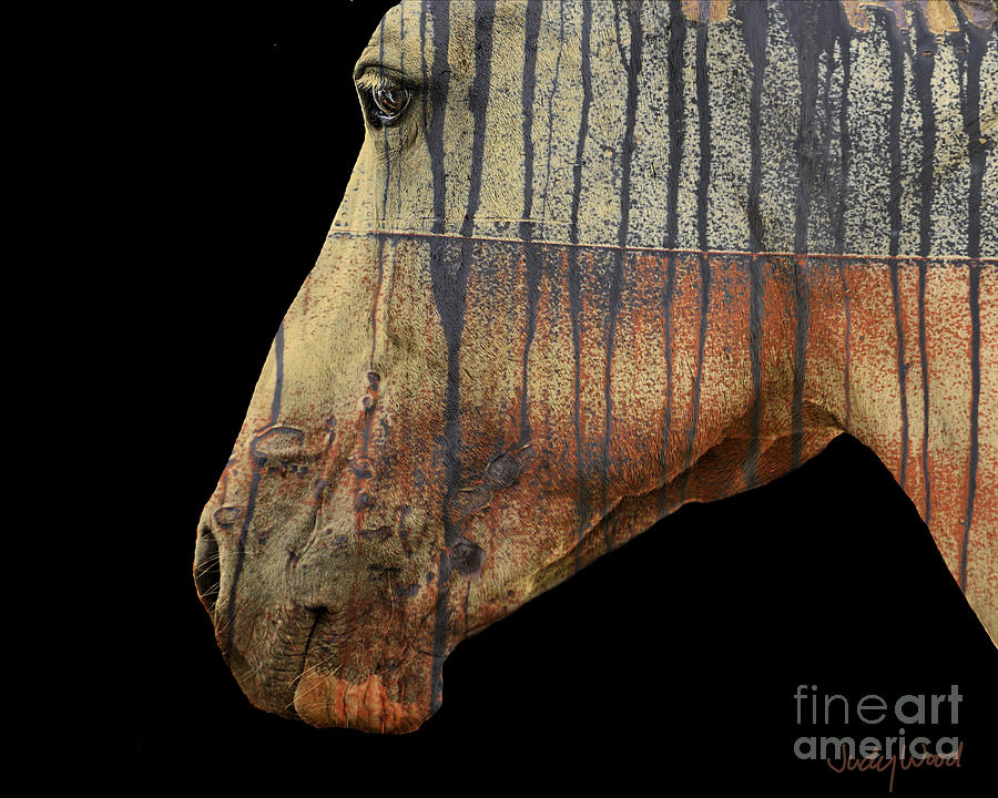 Horse Digital Art - Zeniah Variation 1 by Judy Wood