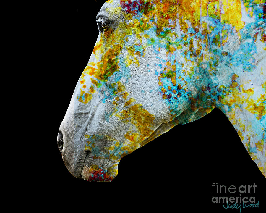 Horse Digital Art - Zeniah Variation 10 by Judy Wood