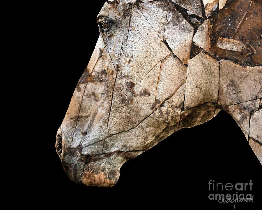 Horse Digital Art - Zeniah Variation 3 by Judy Wood