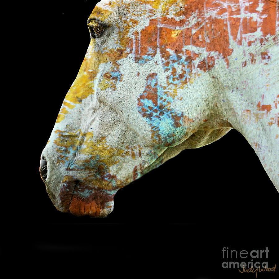 Horse Digital Art - Zeniah Variation 5 by Judy Wood