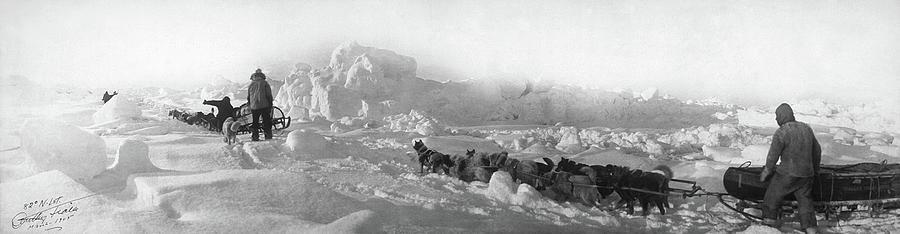 1905 Photograph - Ziegler Polar Expedition by Granger