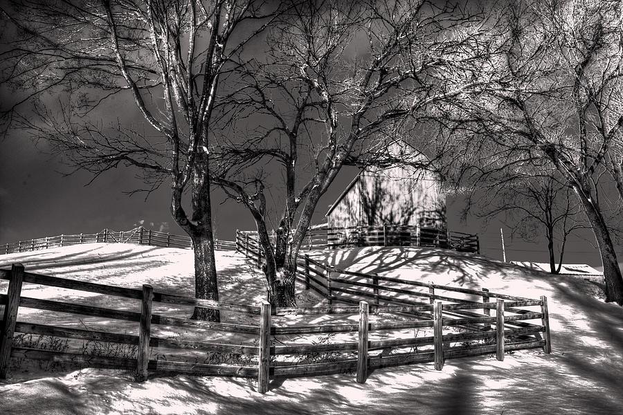 Fence Digital Art - Zigzag Fencerow by William Fields
