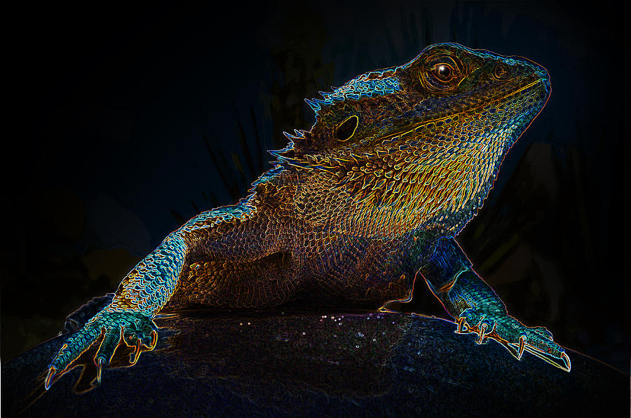 Lizard Photograph - Zilla by Rick Bartrand